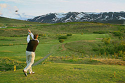 Matt Potts tees off on the 5th at 12:30 AM Arctic Open