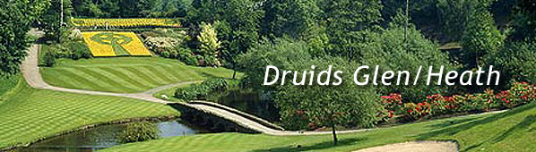 Druids Glen - Heath